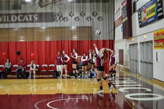 McKenna Carroll, sophomore kinesiology major, throws the ball up to serve. Photo credit: Ryan Pressey