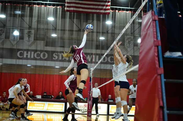 Volleyball-WEB-#1.jpg