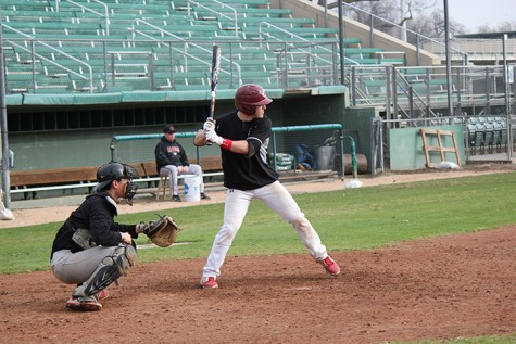 Newcomers revitalize Wildcat baseball