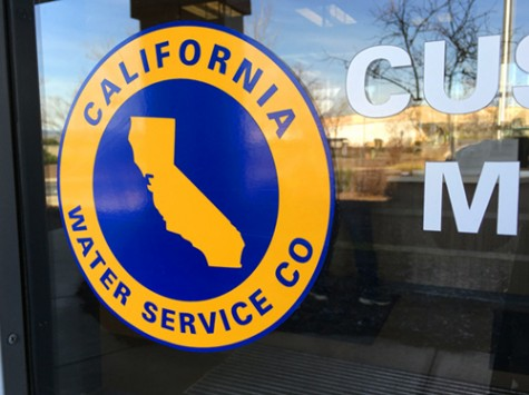 Water companies hope water restrictions dry up