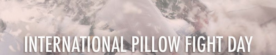 From the International Pillow Fight Day facebook page