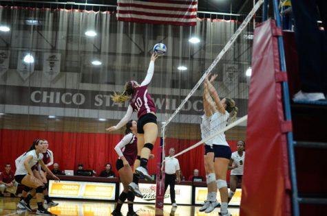 Volleyball web 2.jpg