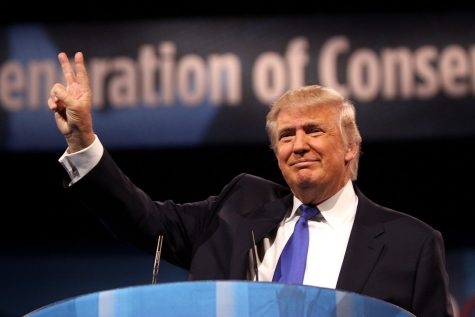 Wildcats react to presumptive Trump nomination