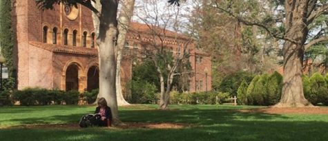 Chico State ranked No. 8 among the best public universities