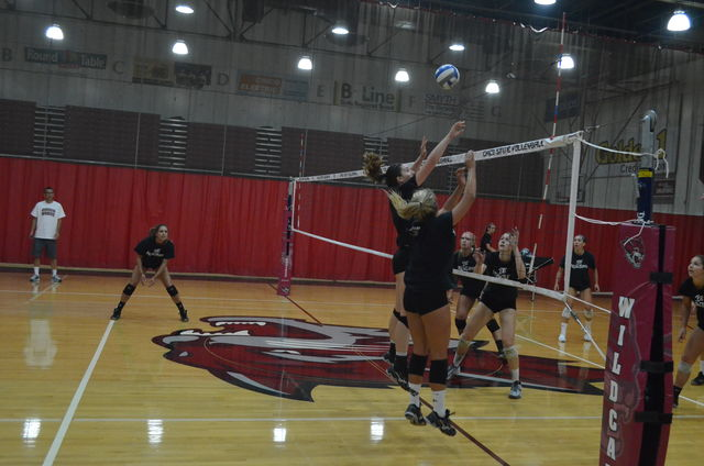 The+Chico+State+women%27s+volleyball+team+practices+before+their+game.+Photo+credit%3A+Jordan+Jarrell
