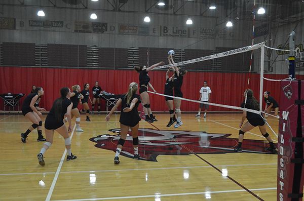 The Chico State women's volleyball team blocks a spike during their practice. Photo credit: Jordan Jarrell
