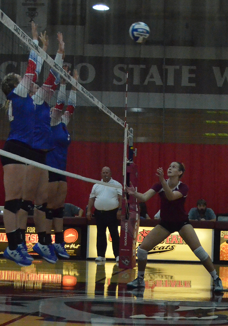 First-year middle hitter Kim Wright attempts to set the ball during a 'Cats home game. Photo credit: Jordan Jarrell