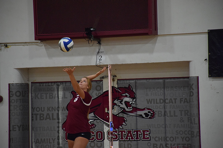 Tristen Thompson serves the ball in a Chico State game. Photo credit: Royal T Lee-Castine