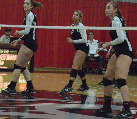 Volleyball team sweeps the Gators