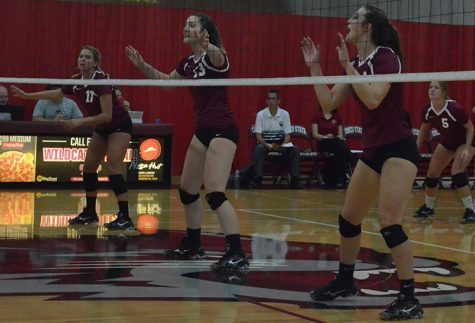 Volleyball team advances to semifinals