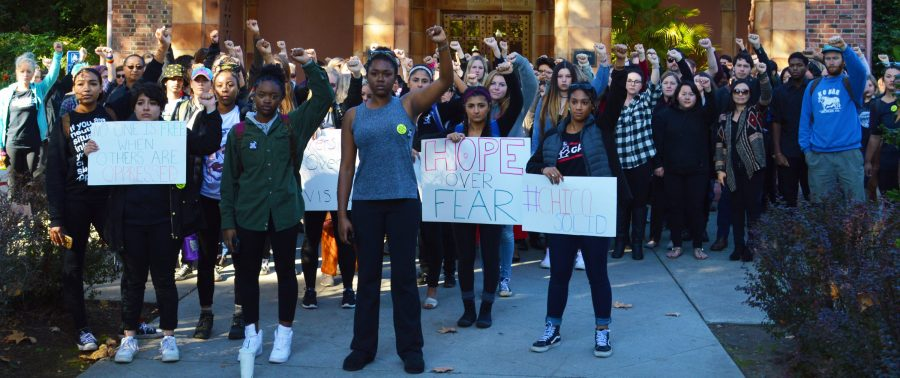 Bustling activism alive and well on campus