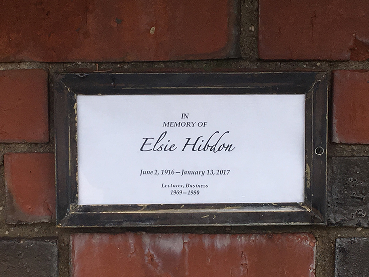 The late retired lecturer Elsie Hibdon is remembered by Chico State with a temporary plaque that lies under the university flags. Photo credit: Kayla Fitzgerald
