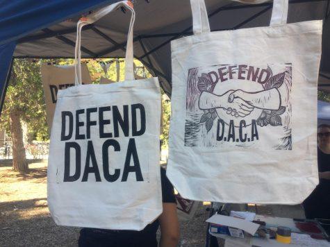 DACA bags