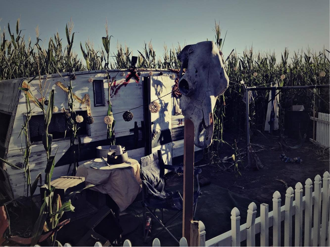 An eerie trailer looms in the corn maze. Peek inside to see what awaits.  Photo courtesy of Country Pumpkins