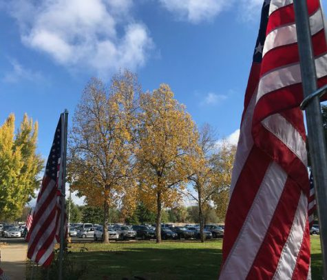 Veterans Day ceremony takes place at Chico Elks Lodge
