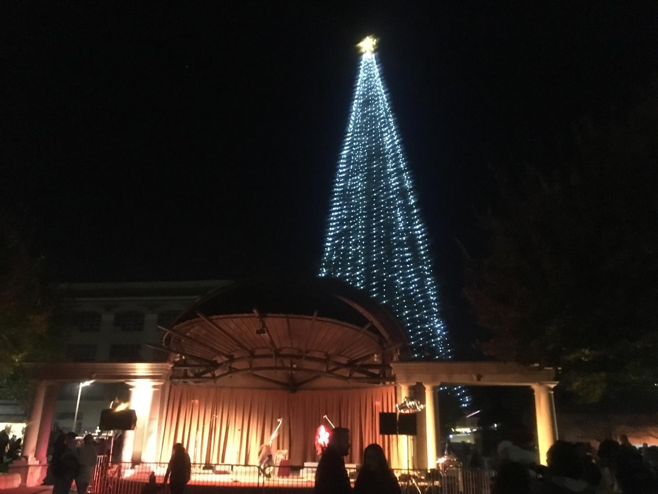 Christmas tree to be lit at the downtown City Plaza in Chico. Photo credit: Natalie Hanson