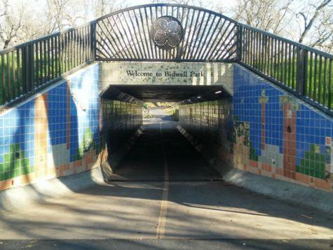 Bidwell Park Bridge