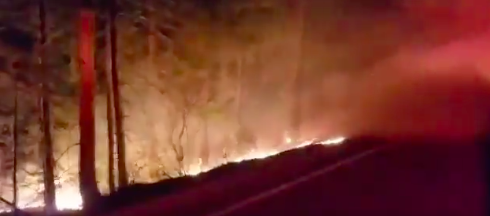 Flames on either side of Highway 32 took four hours to extinguish. Photo courtesy of footage from CAL Fire.