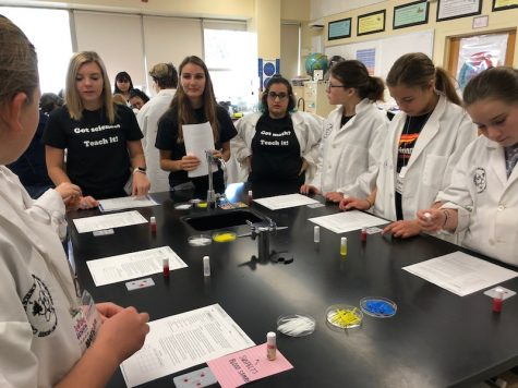 Girls get chance to learn about science on campus