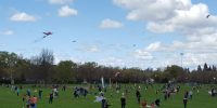 CARD hosts annual spring celebration with kites
