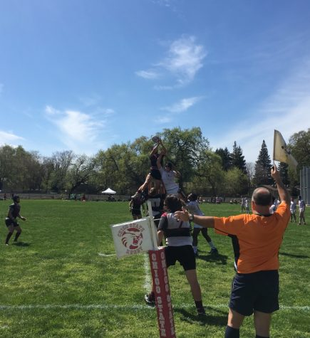 Chico State men's rugby defeats Stanford 66-19 to advance to championship Sunday
