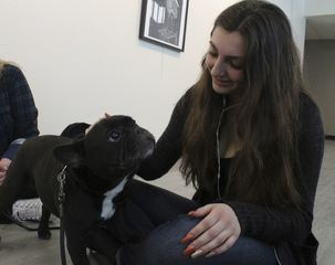 Dogs and their owners took over the 3rd floor of the BMU Thursday morning, at a WrecPrograms event called Canine Cuddles.