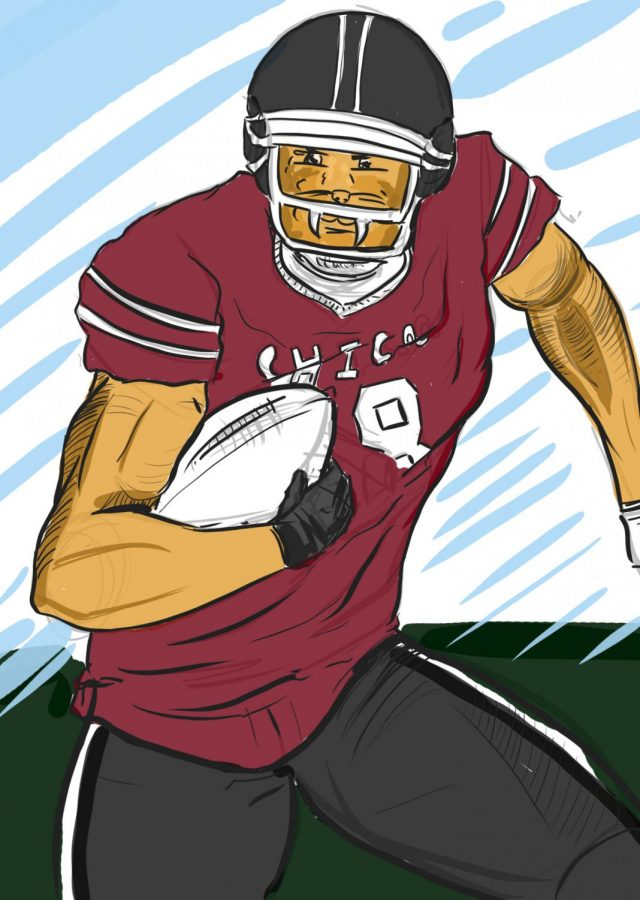 Do you think Chico State should bring back its football team? Photo credit: Diego Ramirez