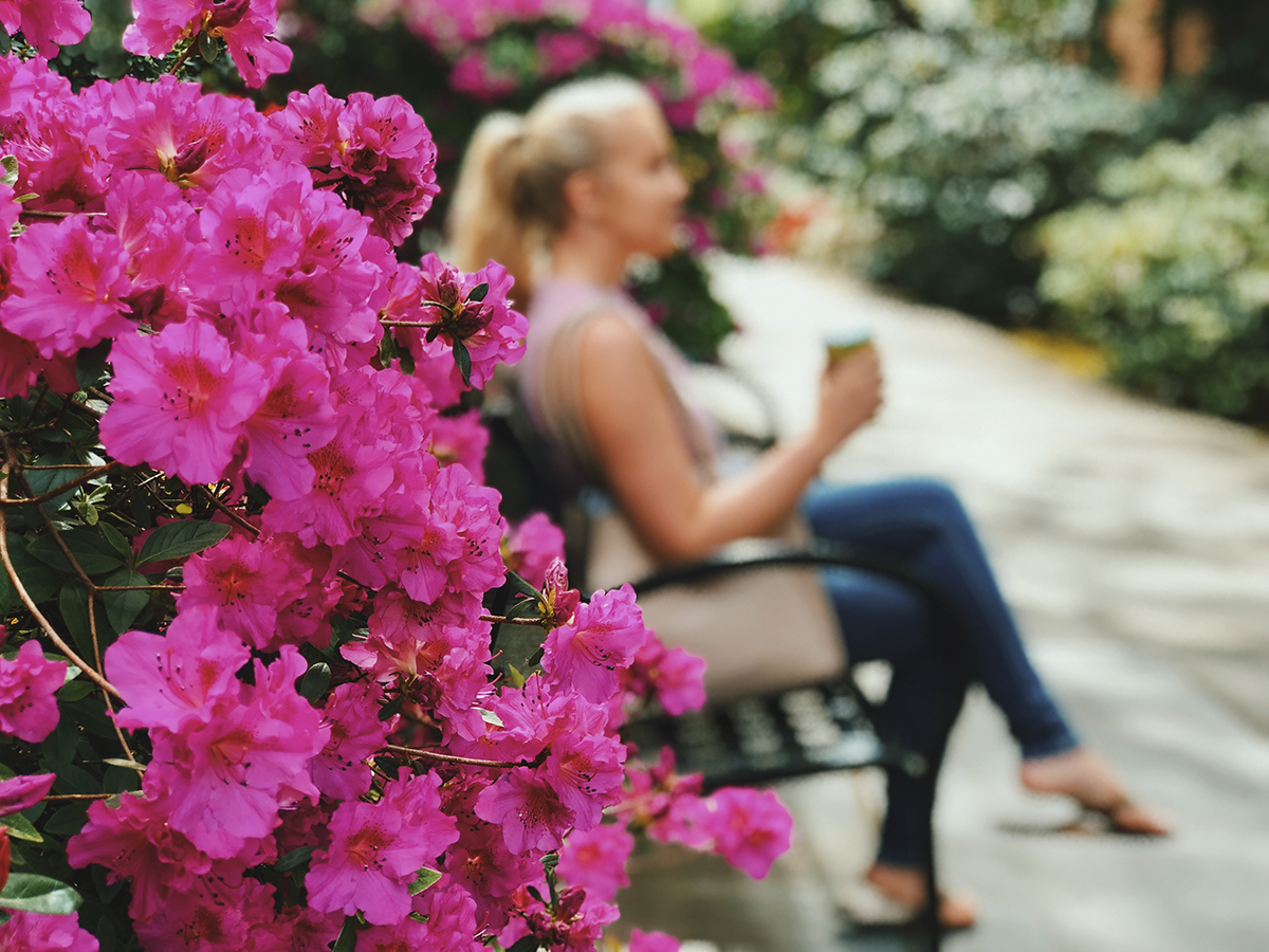 Spring has sprung Wildcats! Our beautiful campus has many spots to unwind from the hustle and bustle and reset those thinkin' minds. Rain or shine take a moment for you today! Photo credit: Kelsey Veith
