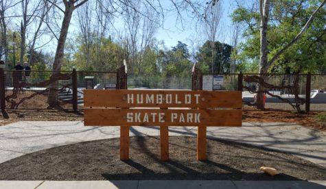 Chico skate park