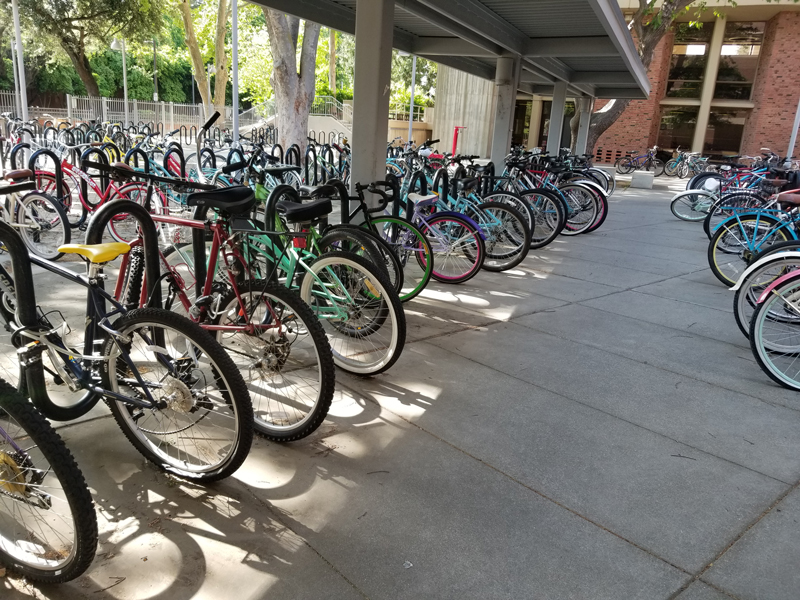 Whitney+Hall+is+a+common+place+for+students+to+lock+their+bikes+because+of+the+number+of+students+living+in+the+dorms+on+campus.