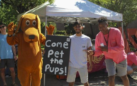 Gentlemen of Alpha Sigma Phi and volunteers at the Butte Human Society got together to bring some cute, adoptable pups to the catwalk by the Meriam Library on Tuesday morning. Photo credit: Anne Chamberlain