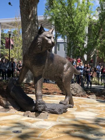 Roar against wildcat statue has my vote for student involvement