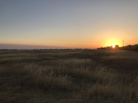 Butte County meadowfoam preserve