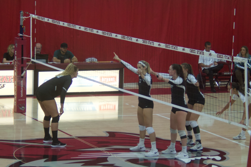 Chico State prepares for a serve from Cal State San Bernardino in this archived photo Photo credit: Maury Montalvo