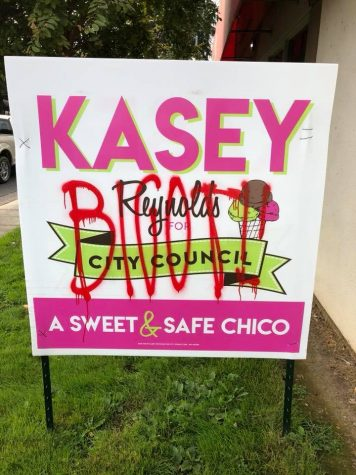 Vandalized campaign sign