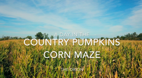 Country Pumpkins offers one of the largest corn mazes near Chico for Halloween