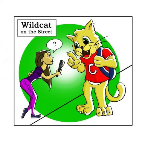 Wildcat on the Street: Packing up early before a lecture is dismissed