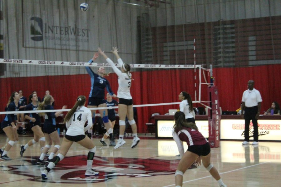 Chico+State%27s+Kim+Wright+goes+up+for+the+blocked+shot+attempt+against+Sonoma+State+in+this+archived+photo.+Photo+credit%3A+Ricardo+Tovar