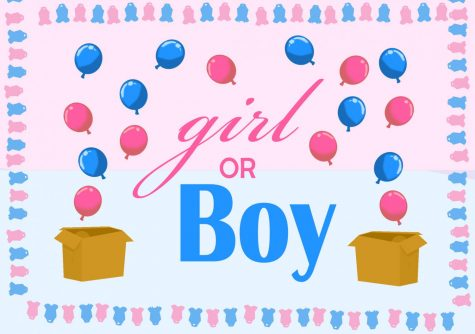 Gender reveals: harmful or celebratory?