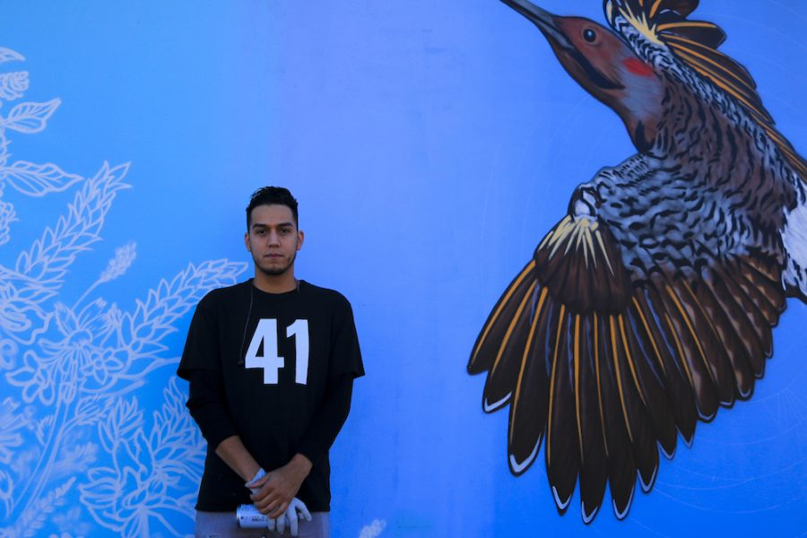Christian+Garcia+In+front+of+a+flicker+bird+and+foliage+at+the+mural+painting+on+Second+St+and+Ceder+St+Photo+credit%3A+Melissa+Herrera