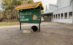 Paradise High School on the road to Recovery