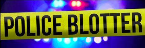 Police Blotter: Indecent exposure, fraud and burglary