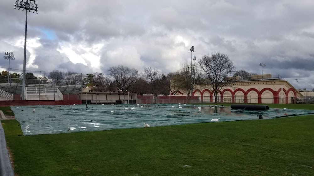 Rain flooded the tarp on the softball field after a thunderstorm. Photo credit: Brandon Downs
