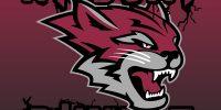 The Wildcat Rumble returns