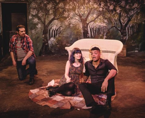 'The Almond Orchard' poses important questions to Chico