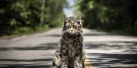 'Pet Sematary' is a poor-man's horror film