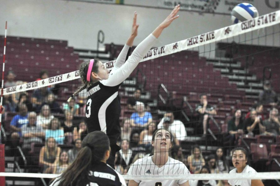 Kim Wright blocking a ball at home game in Acker gym. Photo courtesy of Chico State Sports Information.