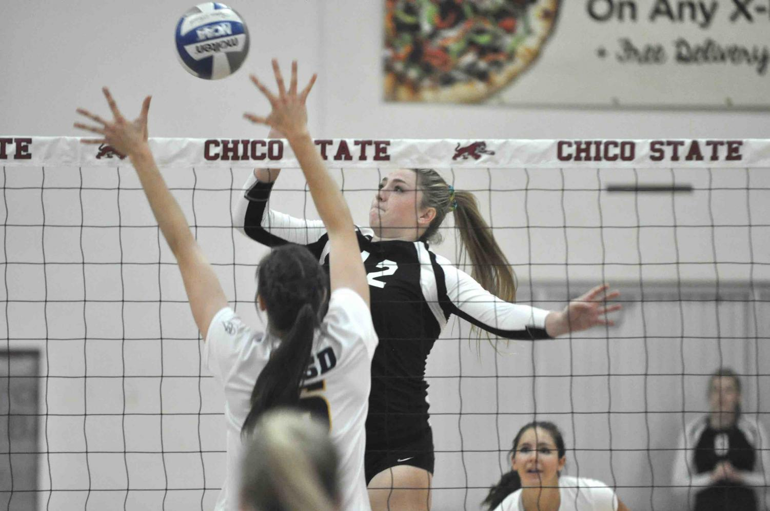 Makaela Keeve spiking the ball in home game at Acker Gym.  Photo Courtesy of Chico State Sports Information.