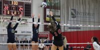 First home game is a clean sweep for Wildcat volleyball