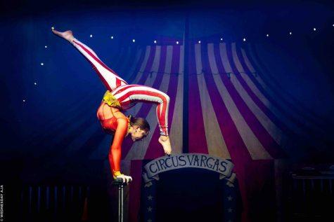 circus1opt.jpg